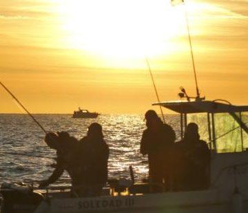 """Pescadores deportivos de seis países participarán en el Open Internacional de Pesca """"La Purísima"""" de Torrevieja"""